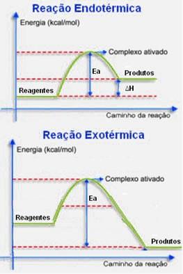 Reações exotérmicas e endotérmicas - Cinética química