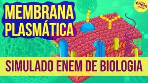 simulado de membrana plasmática
