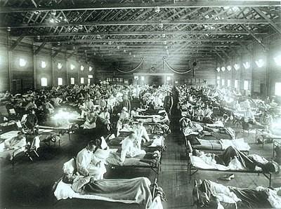 gripe espanhola doenças virais