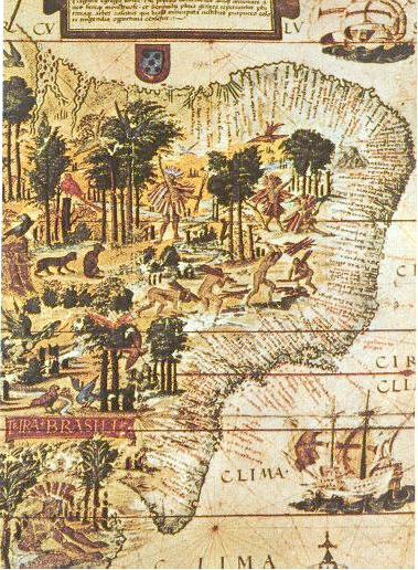 Mapa terras brasilis - descobrimento do Brasil.