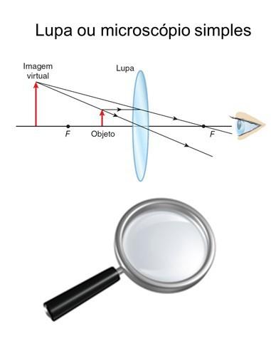 Formação de imagem em uma lupa - olho humano
