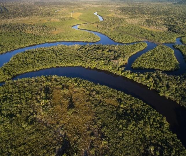 Rio da bacia amazônica - região norte