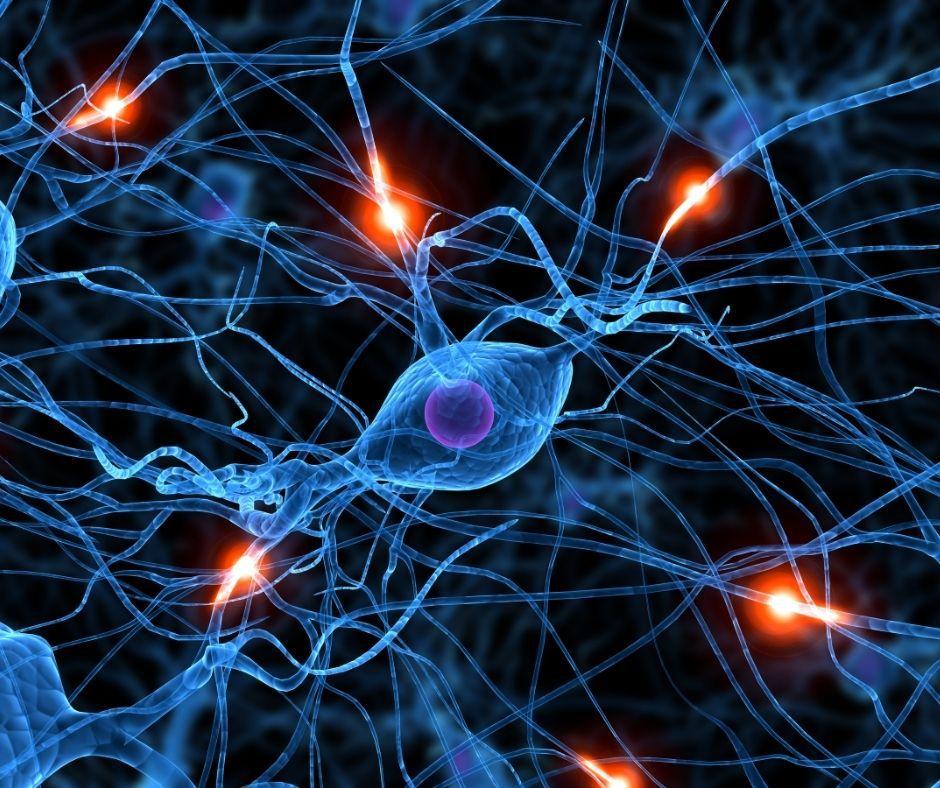 Desenho esquemático demonstrando neurônios em atividade. Fonte da imagem: Getty Images Pro.
