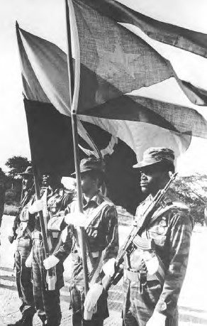 Tropas cubanas em Angola - Guerra Fria na África