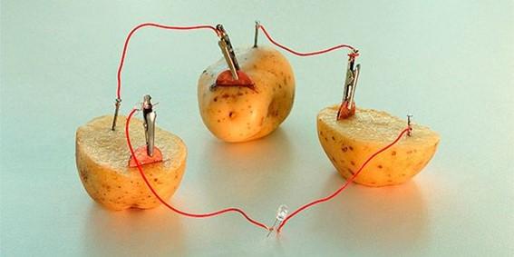 Associação em série de batatas